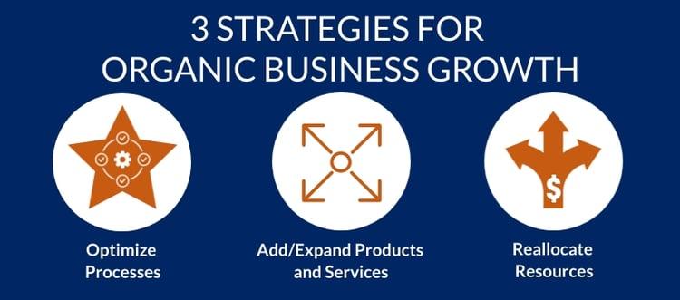 Organic-Growth-Strategies (2)-1