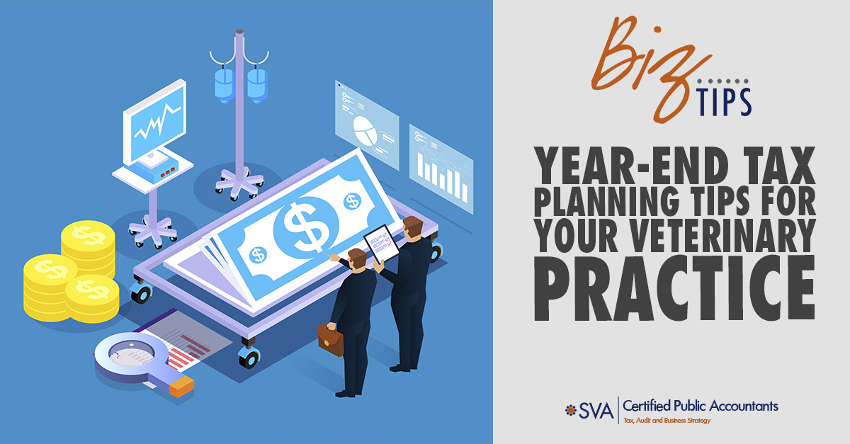 Year-End Tax Planning Tips for Your Veterinary Practice
